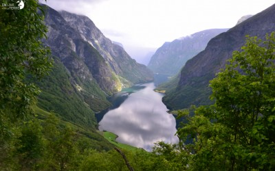 The Nærøyfjord seen from above