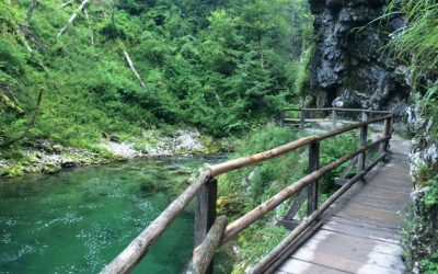Discover Slovenia with the gorges of Vingtar