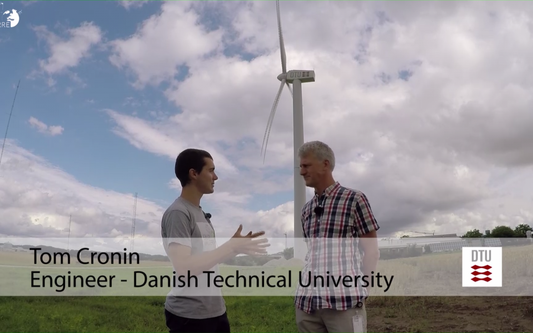Transition from fossil fuels to renewable energy resources – Denmark