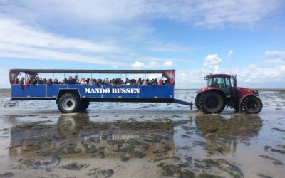 Discovering the island of Mandø in Tracktobus