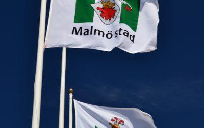 Tour of Malmö city of the future