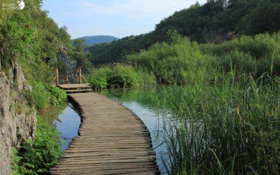 Retrouvailles aux lacs de Plitvice